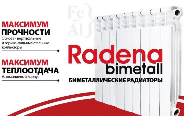 Модели Radena